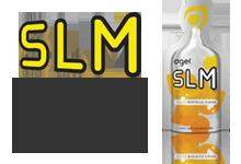 03.SLM